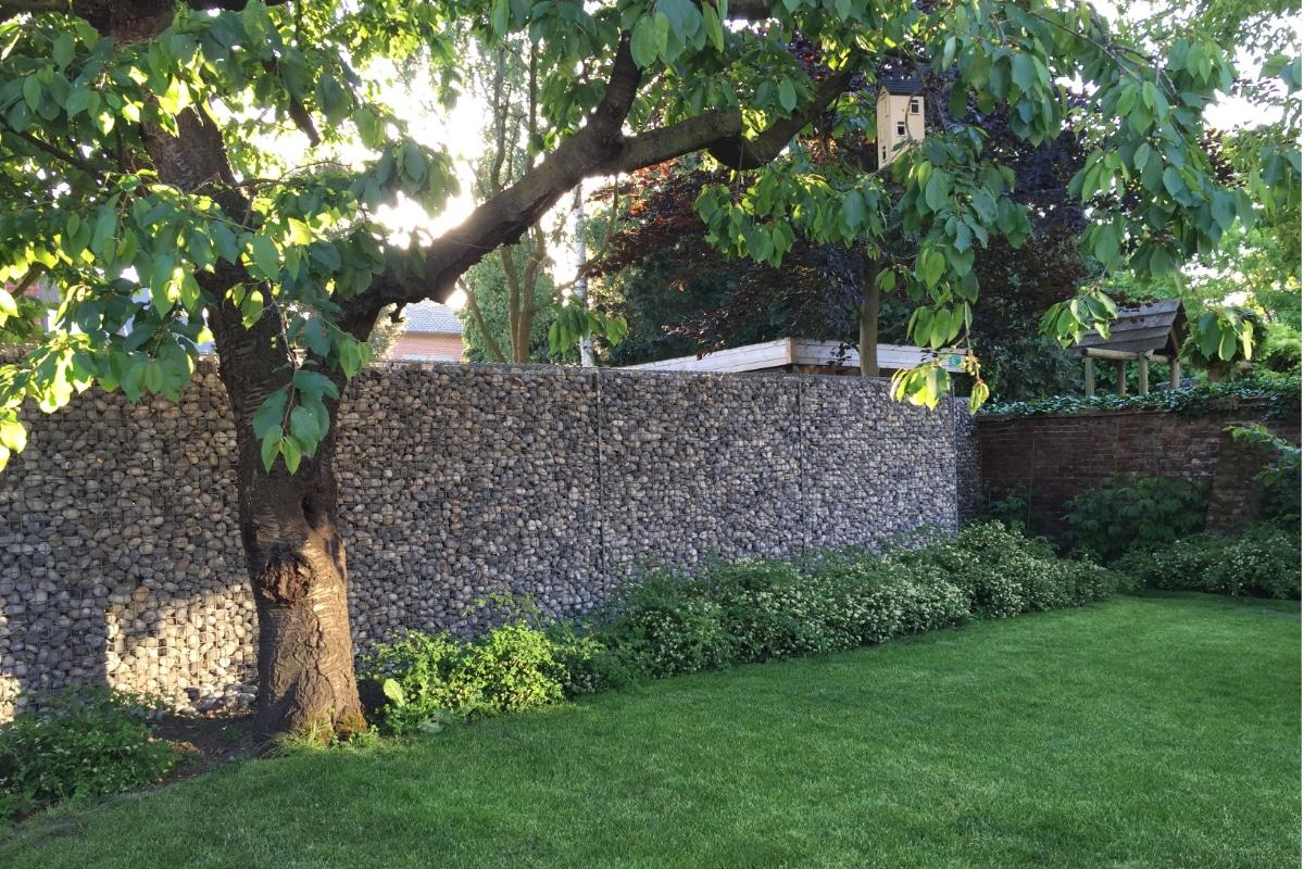 gabion basket tree