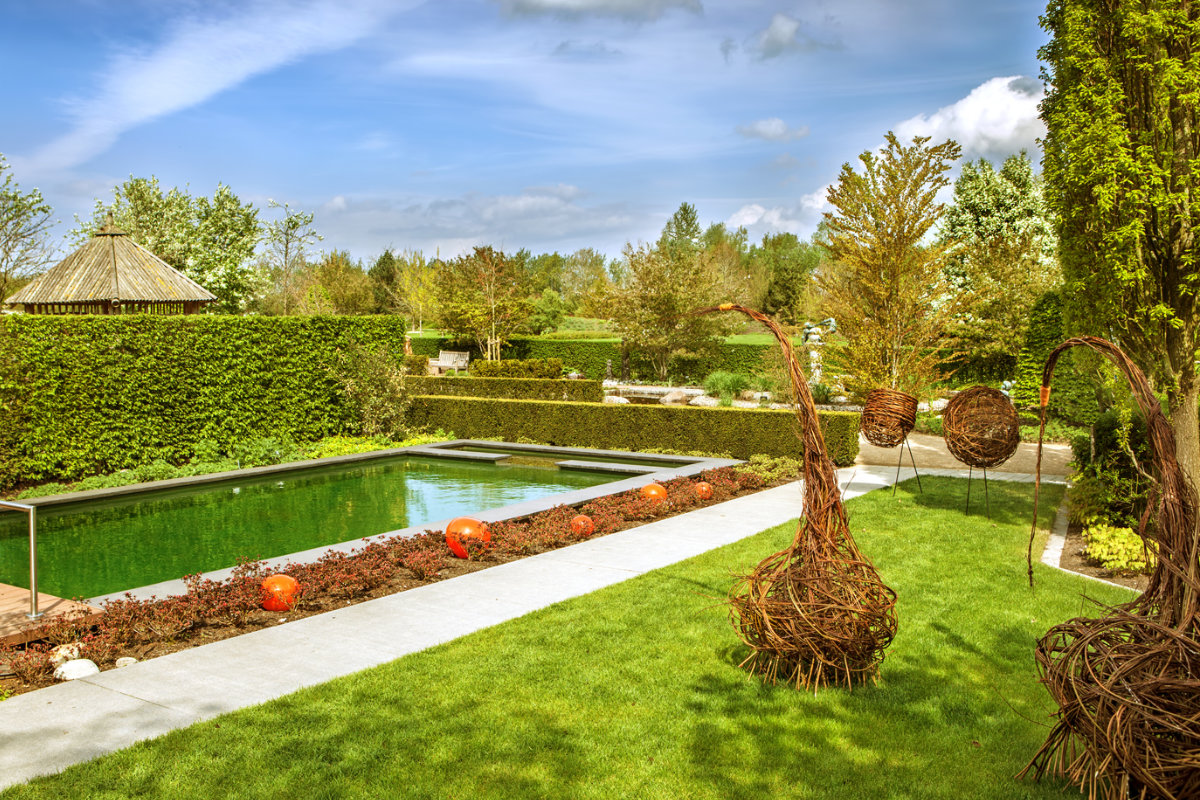 hedge plants inspiration