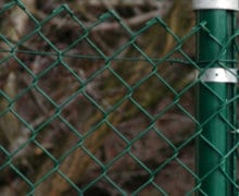 standard wire mesh fence